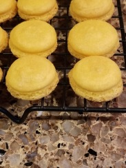 Yellow macaron shells with feet on cooling rack